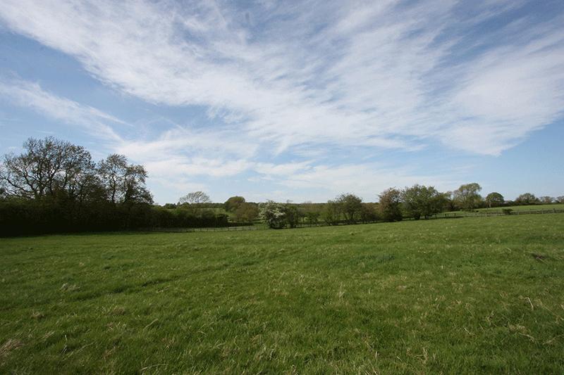Whitley Elm Fields